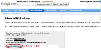 google app interface advance DNS settings