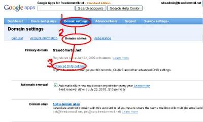google app interface domain settings tab