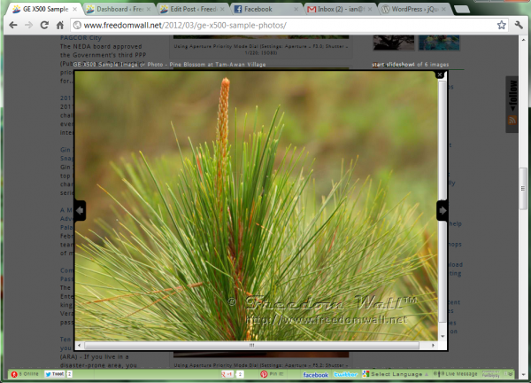 jQuery Colorbox image zoom