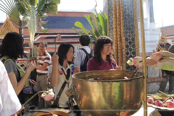 Lotus flower in Holy Water outside the Monastery of the Emerald Buddha
