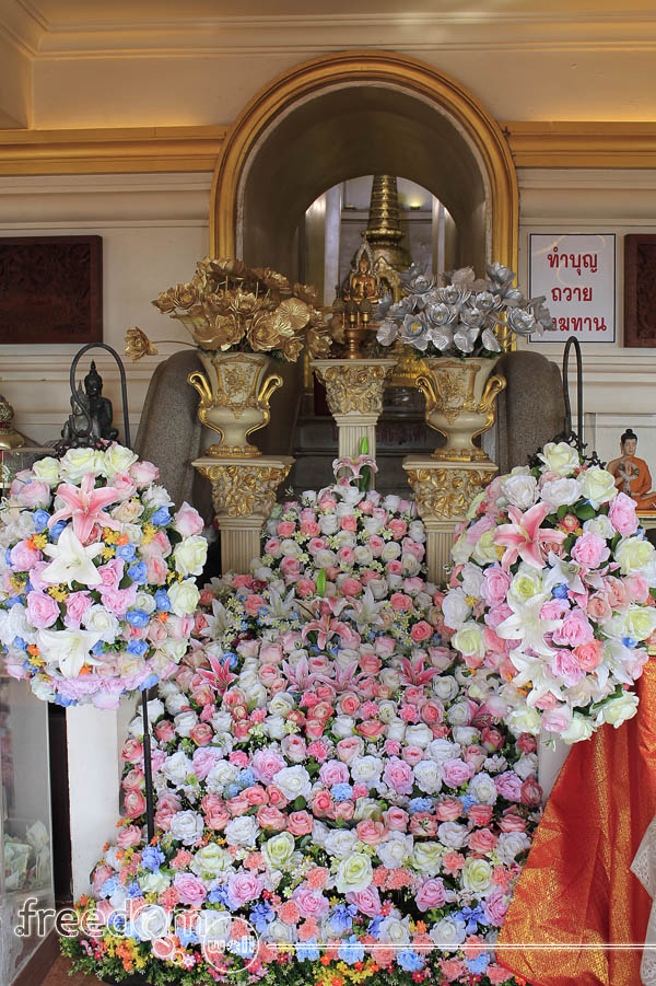 Golden Mount (Wat Saket) Flowers