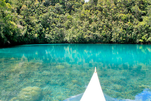 Tojoman Lagoon a.k.a Sohoton Jellyfish Sanctuary