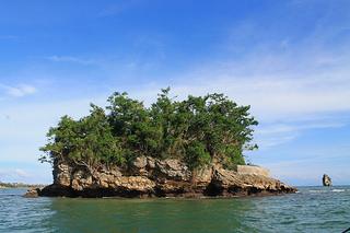 island in padre burgos
