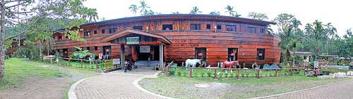 Noah's Ark Panorama at Kamay ni Hesus
