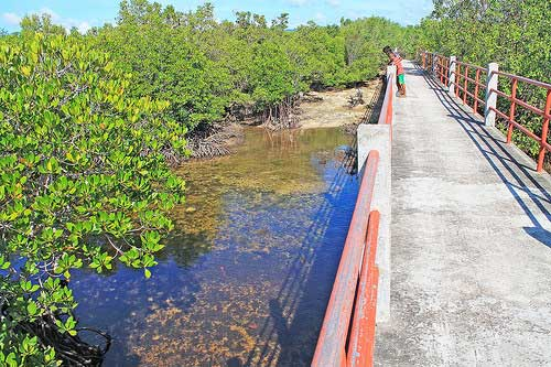 Alibijaban Bridge connecting the communities in the island