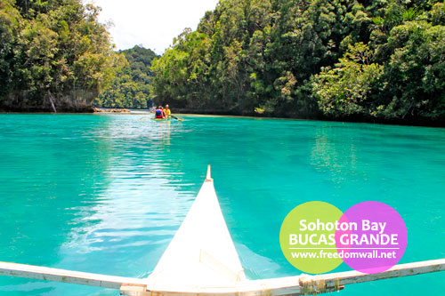 Tojoman Lagoon or the Sohoton Bay Jellyfish Sanctuary