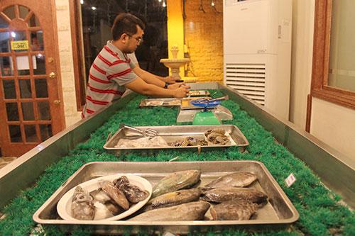 Fresh seafood display
