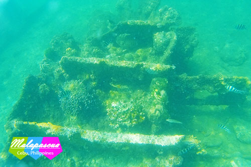A portion of the Japanese shipwreck off the cost of Malapascua