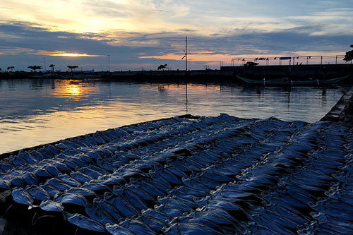 Foreground: dried fish, Bantayan famous produce. Background: awesome Bantayan sunset