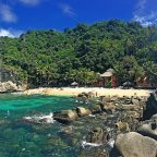 Apo Island Panorama
