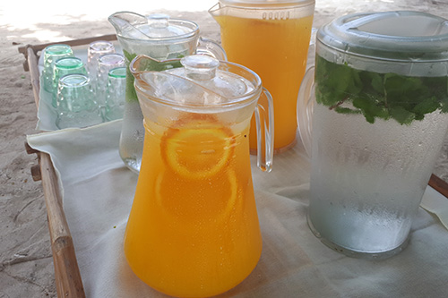 Fresh healthy quenchers