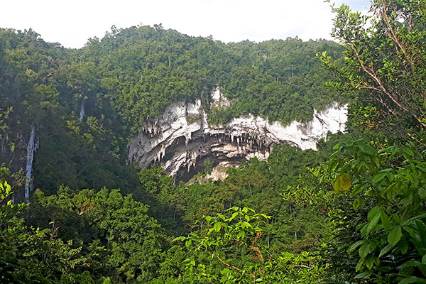 The mouth of Gobingob Cave, Southeast Asia's third largest