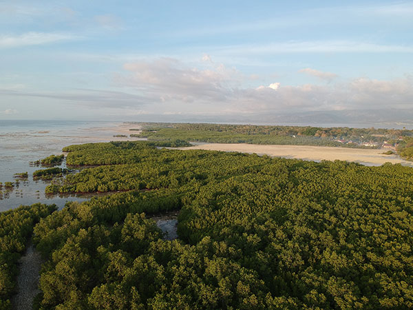 Sipaway Island Mangrove Forest and Langub Beach
