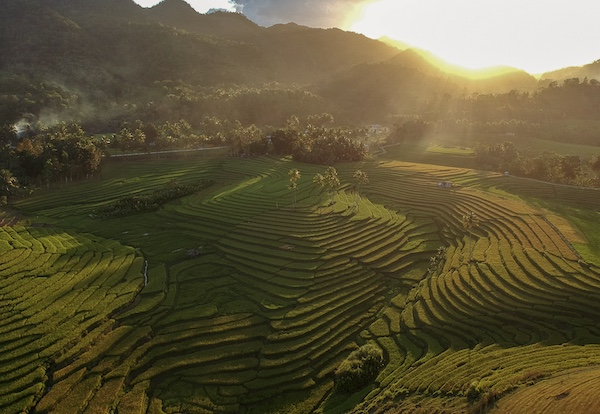 Cadapdapan Rice Terraces is a lot more stunning at sunset