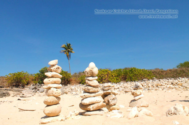 snake or culebra island dasol
