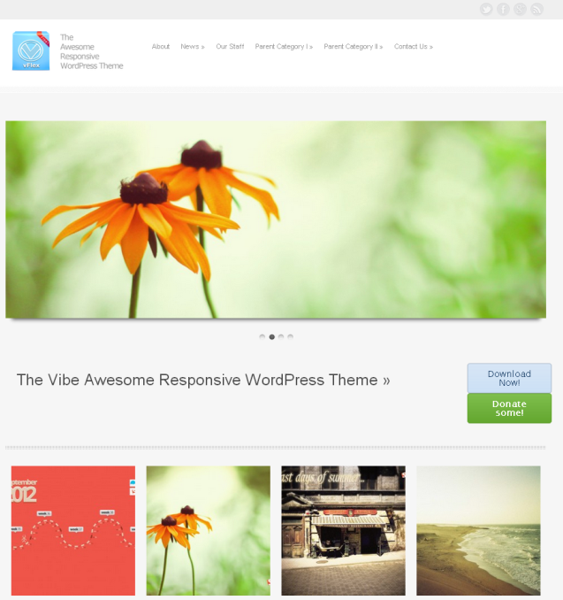 vFlex WordPress Theme